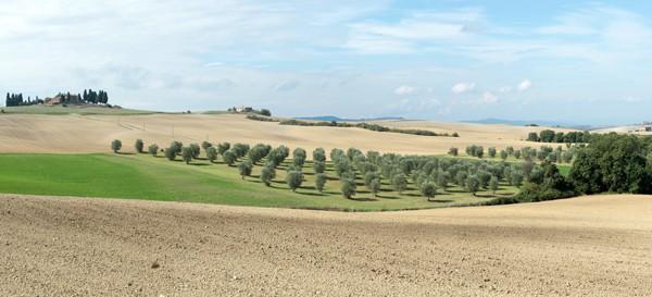 Tuscany055