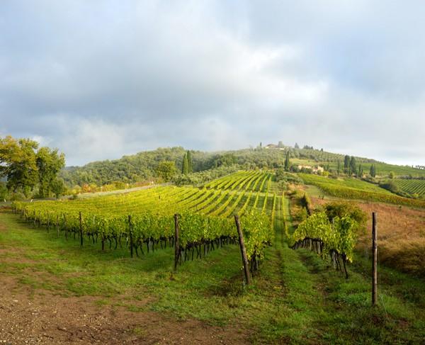 Tuscany119